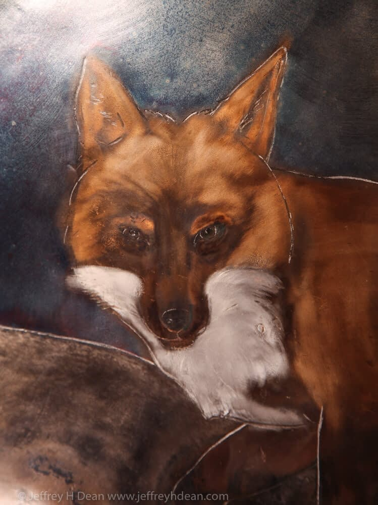 Detail of red fox.