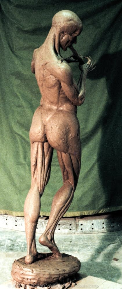 Life-size clay figure built up from the bones and muscles. Naguib School of Sculpture.
